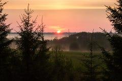 Ciel de coucher du soleil dans les domaines près d'une forêt Images libres de droits