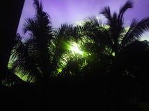 Ciel de coucher du soleil de silhouette photographie stock libre de droits