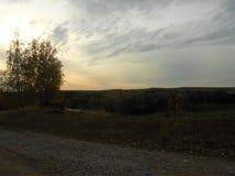 Ciel de crépuscule d'automne dans le domaine avec la route et les mêmes arbres photos libres de droits