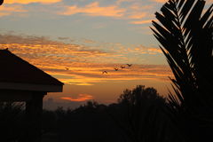 Ciel de lever de soleil de coucher du soleil beau Images libres de droits