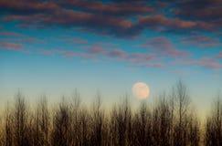 ciel de lune bleue Photos stock