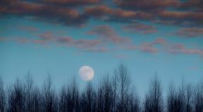 ciel de lune bleue Photographie stock