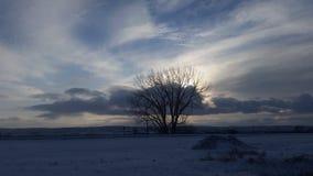 Ciel de novembre Photographie stock