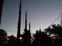 Ciel de nuit Images stock