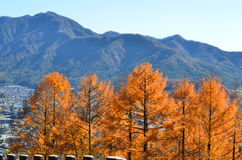Ciel de ressort avec des montagnes Image stock