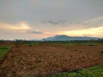 Ciel de soirée et la terre d'agriculture Image stock