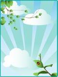 Ciel de source avec les lames vertes Images stock