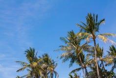Ciel des tropiques Photos libres de droits