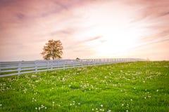 Ciel dramatique de coucher du soleil au site de pays. Image stock