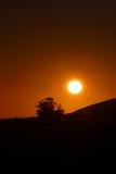 Ciel dramatique de coucher du soleil avec l'arbre de silhouette Photo libre de droits