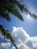 Ciel en été Photo libre de droits