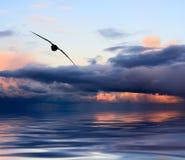 Ciel et coucher du soleil de l'eau photographie stock libre de droits