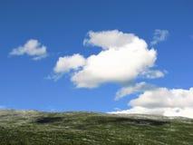 Ciel et herbe Photo libre de droits
