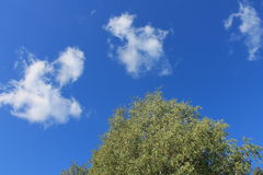 Ciel et nuages d'été Photographie stock