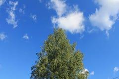 Ciel et nuages d'été Image stock