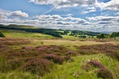 Ciel et nuages sur les collines Photo stock