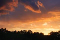 Ciel et silhouette étonnants des arbres Photos libres de droits