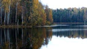 Ciel froid d'automne Photo libre de droits