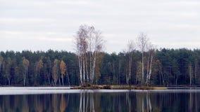Ciel froid d'automne Image libre de droits