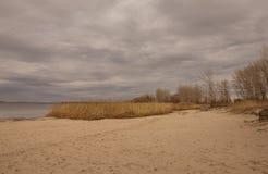 Ciel gris et jaune au-dessus du champ d'automne images libres de droits