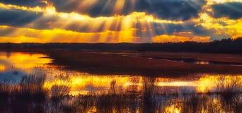 Ciel magnifique de coucher du soleil avec les rayons légers photo libre de droits