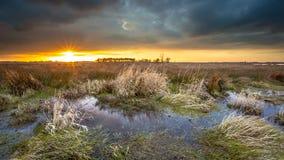 Ciel menaçant foncé au-dessus de secteur de marais pendant le coucher du soleil Photographie stock