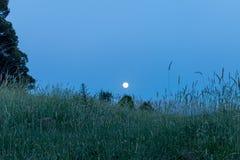 Ciel nocturne sous la lumi?re de lune photo stock