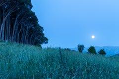 Ciel nocturne sous la lumi?re de lune images stock