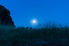 Ciel nocturne sous la lumi?re de lune photographie stock