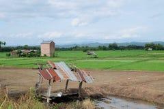Ciel-nuages d'Asiatique de gisement de riz Images stock