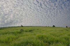 Ciel nuageux blanc au-dessus de champ des montagnes vert Image stock