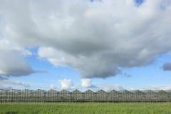 Ciel nuageux d'onder de serres chaudes Images stock