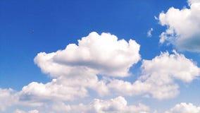 Ciel nuageux de matin de Timelapse banque de vidéos