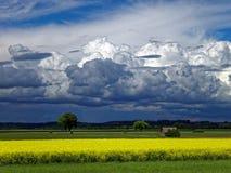 Ciel obscurci par des nuages noirs au-dessus de campagne en été images stock