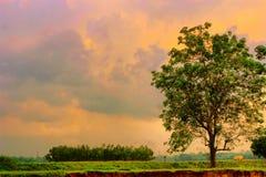 Ciel rougeâtre photos libres de droits