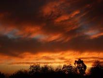 Ciel rouge étonnant Images libres de droits