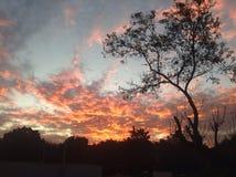 Ciel rouge Photo libre de droits