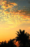 Ciel tropical de coucher du soleil Photos stock