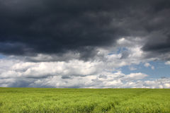 Ciel vert de zone et de tempête. Photographie stock libre de droits
