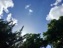 Cieli blu Fotografie Stock Libere da Diritti