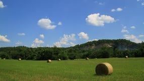 Cieli blu sopra la valle di fieno Fotografia Stock