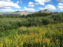 Cieli del Colorado Fotografia Stock Libera da Diritti