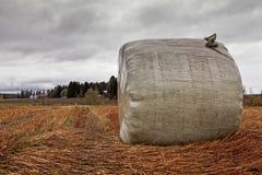 Cieli di Hay Roll Under The Autumn Immagini Stock Libere da Diritti