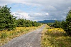 Cieli lucidi, poco tempo dopo pioggia intensa, in montagne di Jeseniky Fotografie Stock Libere da Diritti