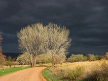 Cieli scuri Fotografie Stock