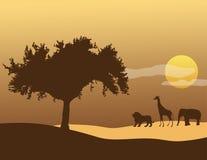 Cielo africano Stock de ilustración