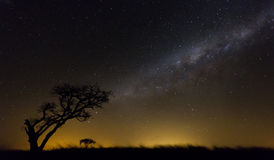 Cielo africano Fotografie Stock
