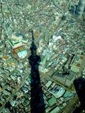 cielo-albero Tokyo nel giorno soleggiato Immagine Stock