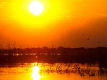 Cielo anaranjado de la puesta del sol que refleja en el agua del río Zambezi foto de archivo