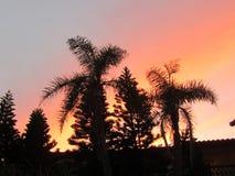 Cielo anaranjado de la tonalidad Fotos de archivo